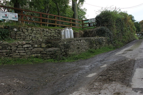 Stondin Laeth, Tredafydd, Tresaith