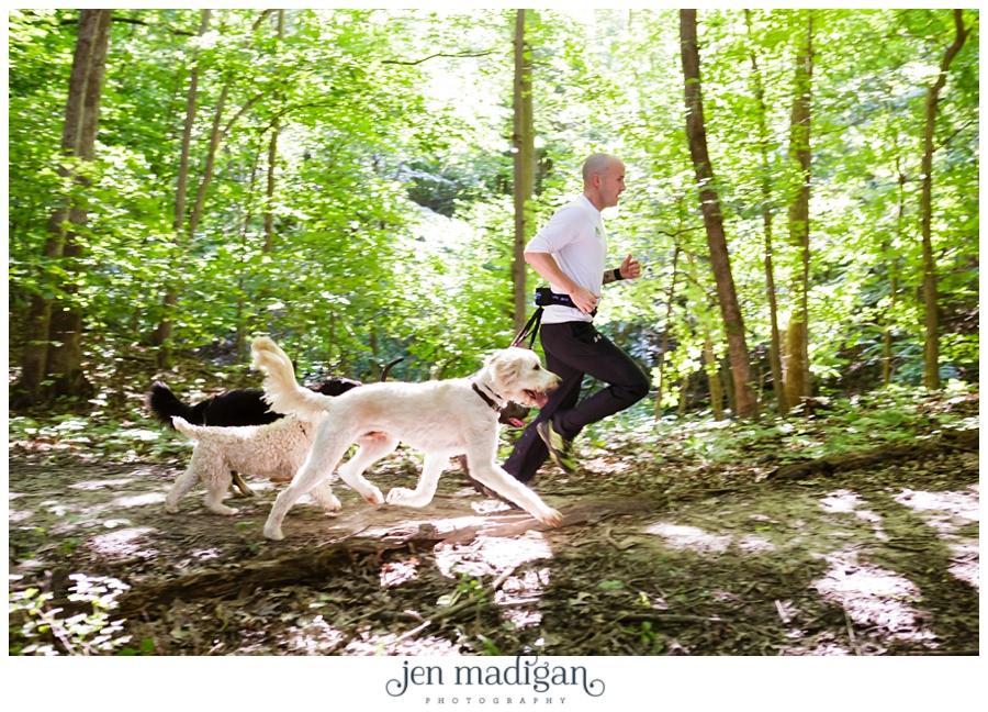 bounding-hound-13