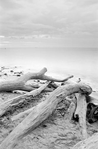 ocean city sea blackandwhite bw cloud tree film beach stone analog sunrise 35mm landscape sand europe ship poland polska baltic negative analogue ostsee danzig klif miasto gdynia id11 trójmiasto canoneos300v pomorskie rolleiretro100 tamronspaf2875mmf28xrdildasphericalif batltic bwfp
