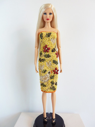Project Project Runway Challenge 5