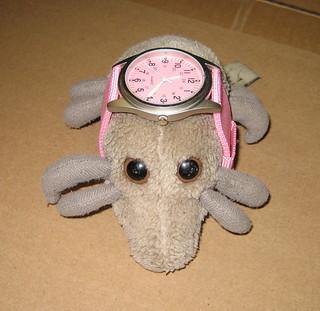Dust Mite wristwatch