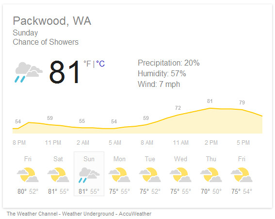weather at the Packwood city rummage sale on Sunday