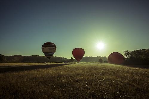 sky sun tree field sunrise soleil ciel hotairballoon arbre mongolfière champ