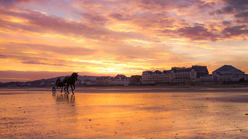 sky horse france beach clouds sunrise canon cheval eos soleil du ciel cavalier normandie nuages tamron normandy plage calvados lever cabourg littoral 500px 60d ifttt