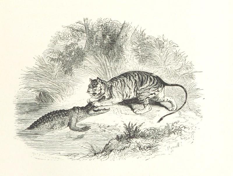 Image taken from page 163 of 'Voyage et aventures autour du monde de Robert Kergorièu. [With plates.]'