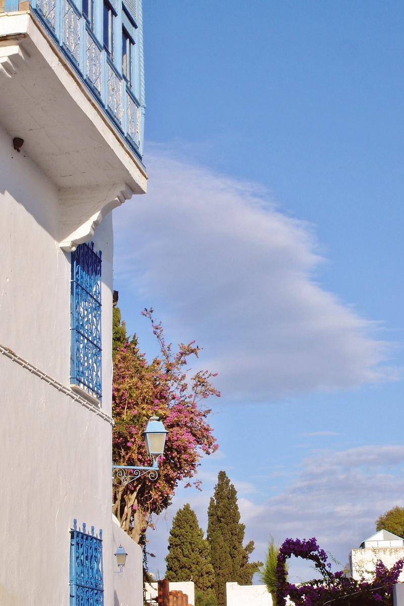 Sidi Bou Saïd (4)