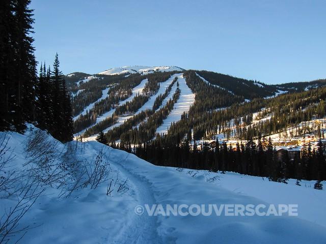 Snowshoe Tour-5