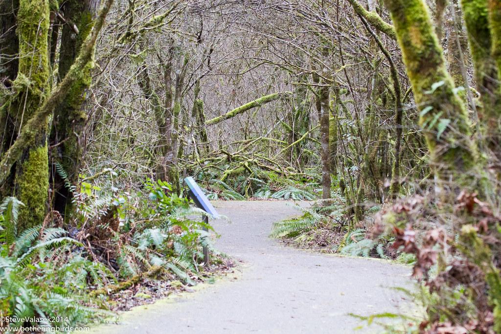 Taulatin Hills Park