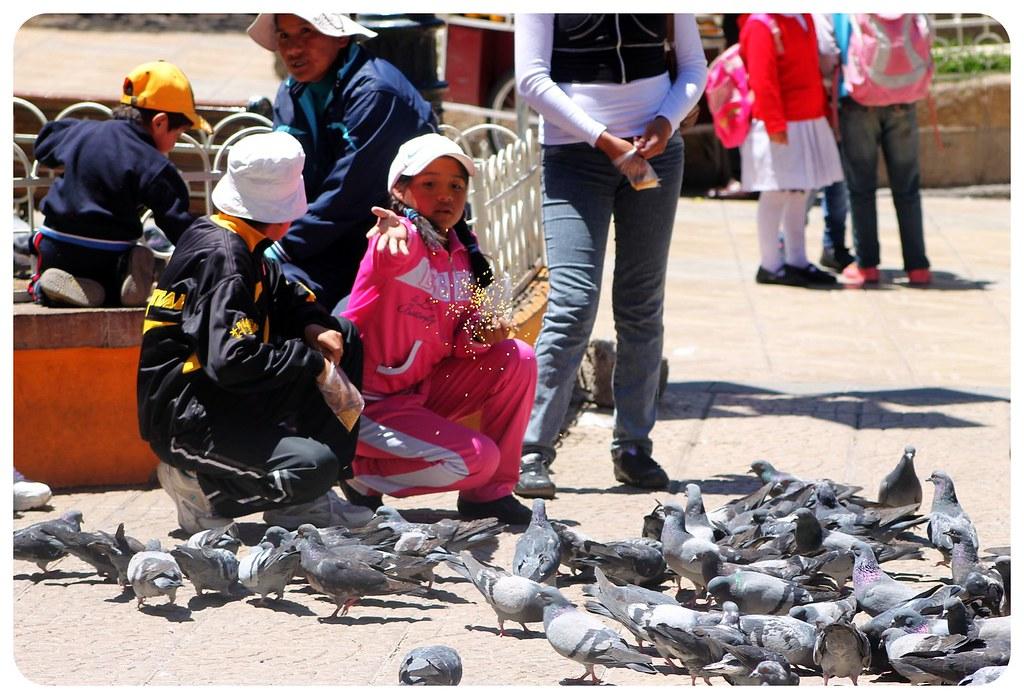 potosi feeding pigeons bolivia
