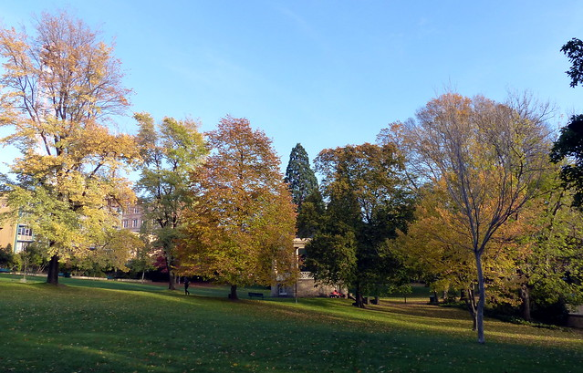 Autumn in St David's Park