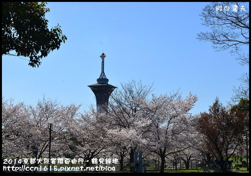 2014京都大阪賞櫻自由行.鶴見綠地DSC_1297