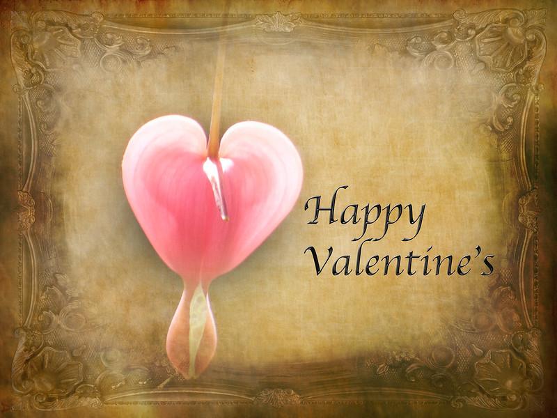 Happy Valentine's dear friends
