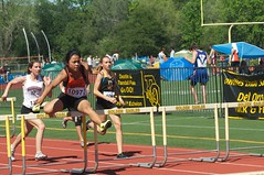 sprint, athletics, track and field athletics, 110 metres hurdles, championship, obstacle race, 100 metres hurdles, sports, running, hurdle, heptathlon, person, hurdling, athlete,