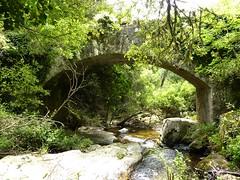 Le pont génois de l'Alzellu