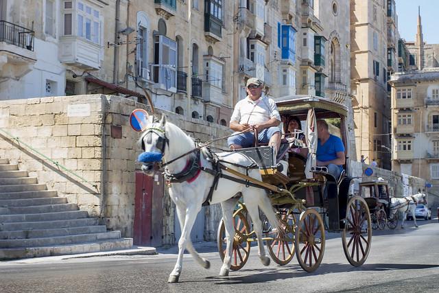 Carriage in Valletta - Malta