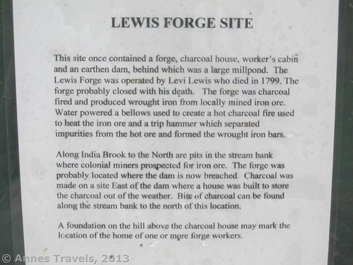 Sign about the Lewis Forge Site, Buttermilk Falls Natural Area, Mendham, New Jersey