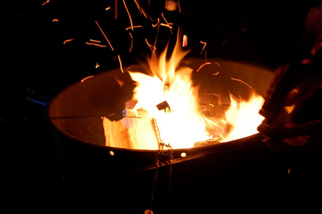Smores - Camping and Boating, Gross Reservoir, CO