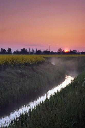 sunset sun film water grass fog analog sunrise 35mm landscape spring europa europe kodak dusk poland polska rape pole negative analogue wiosna colza canoneos300v pomorskie kodakektar żuławy