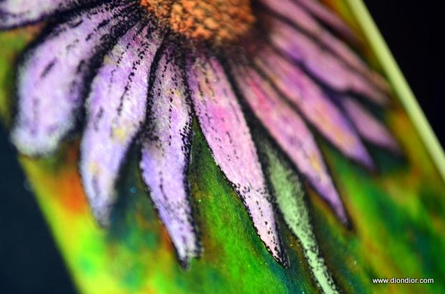 Twinkling Cone Flower