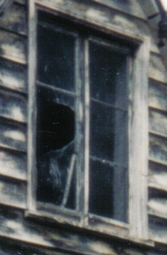 Ohoka Farmhouse face in window