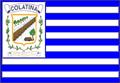 Bandeira da cidade de Colatina