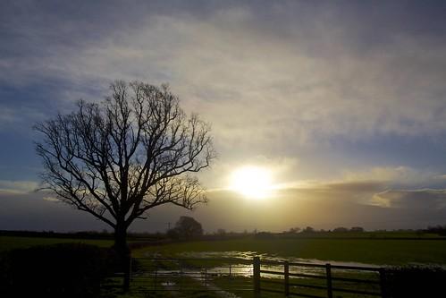 uk sky sun tree field sunrise gate day flood cloudy buckingham soe soggy fd28mmf28