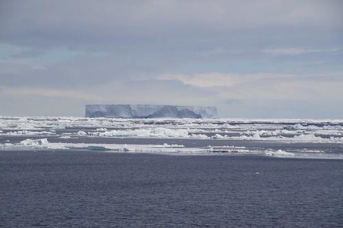 605 Weddell Sea