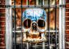 Skull of Leg Shield by Sky Noir