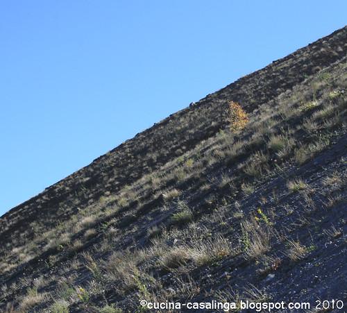 Vesuv Steil
