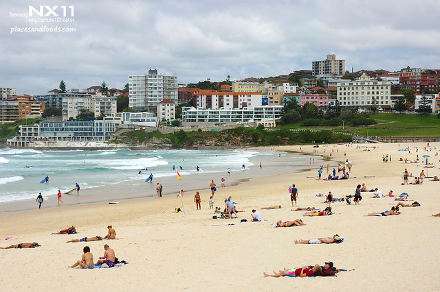 bondi beach scenery 2