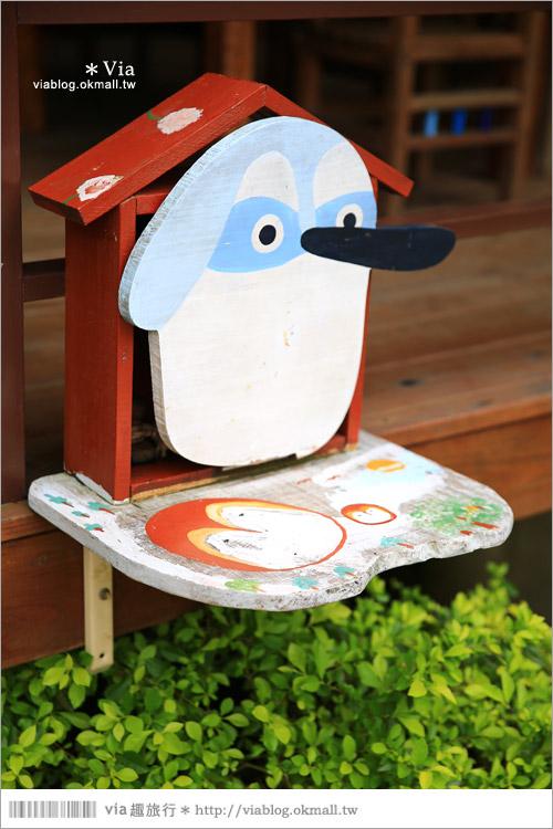 【新竹景點推薦】森林鳥花園~親子旅遊的好去處!在森林裡鳥兒與孩子們的樂園54