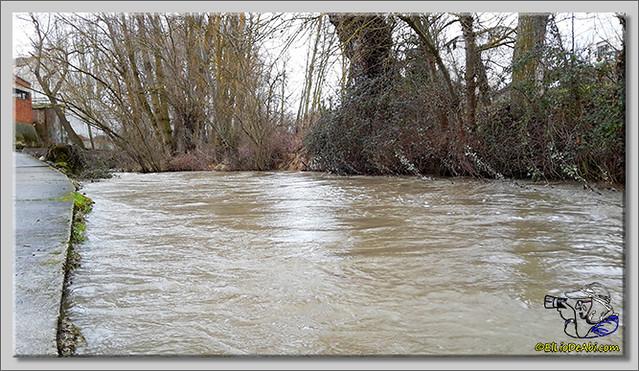 Río Oca a su paso por Briviesca (2)