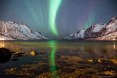Aurora test shoot in Ersfjordbotn :)