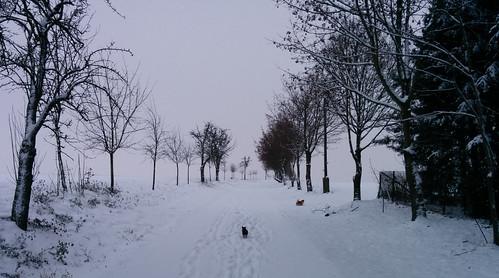 Winterspaziergang v2