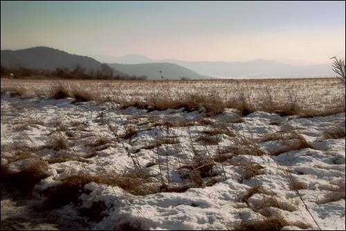 Winter fields, Csobánka, Hungary