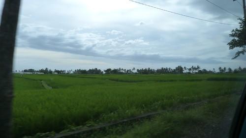 Bali-3-004
