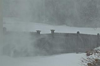 January Blizzard 03