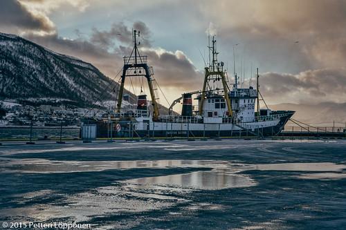 Tromssa (44)