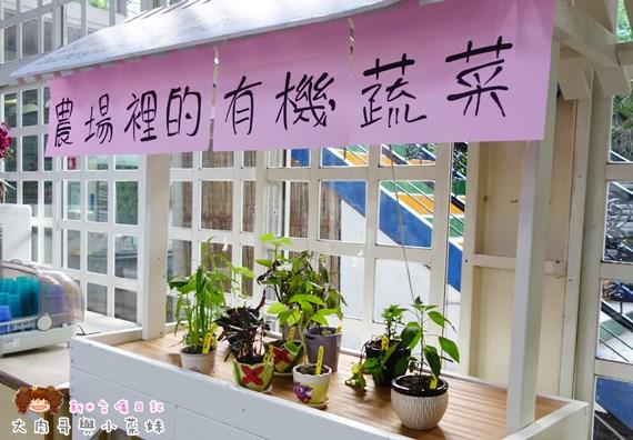 頭城農場植物 (1).JPG
