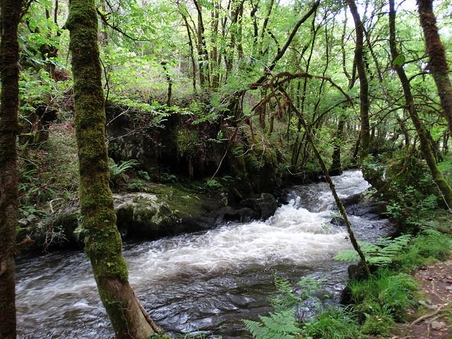 Río Mendo en Oza-Cesuras y Coirós