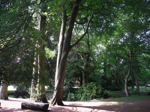 Endcliffe Park and Porter Brook