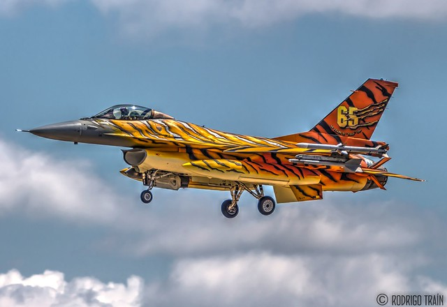AIR FORCE BELGIAN. F-16 (31 TIGER SQUADRON).