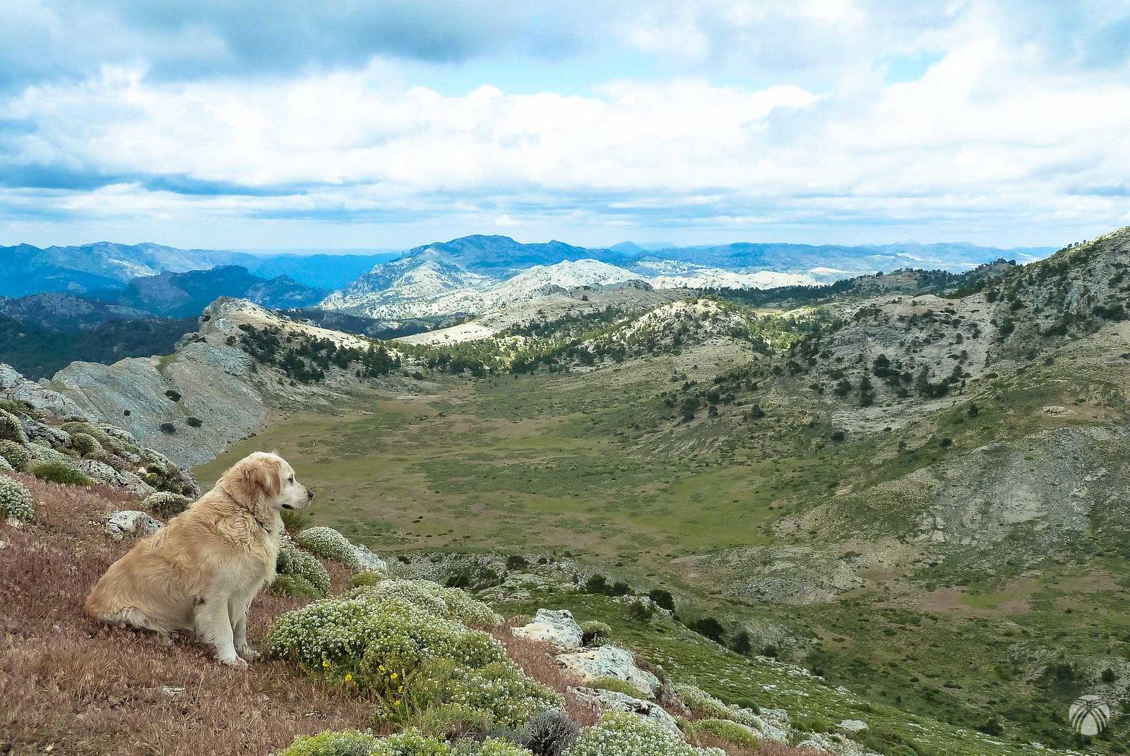 Remontamos hacia el Cerro de los Tornajos