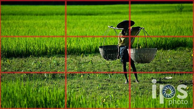Rule of Thirds - Composition