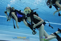 underwater diving, sports, scuba diving, underwater sports, water sport,