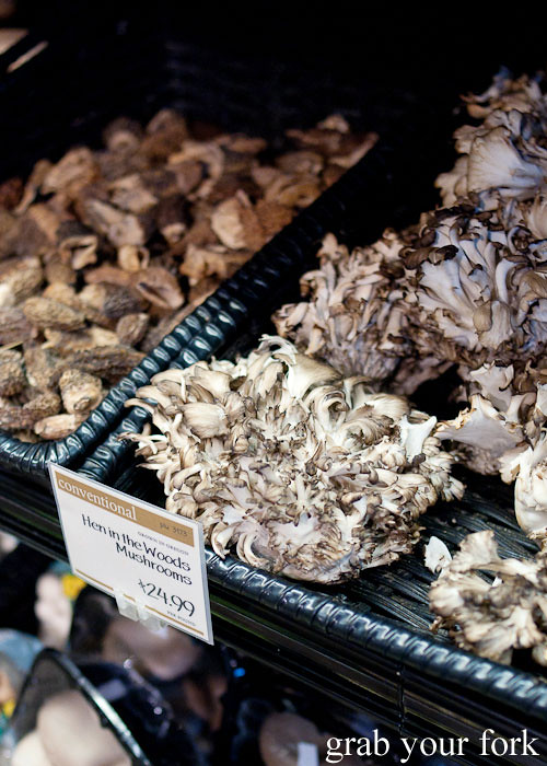 hen in the woods mushrooms morels at whole foods market flagship store supermarket groceries austin texas