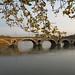 Le Pont Neuf, River Garonne, Toulouse, Occitanie by David McKelvey