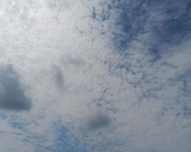 skywatchDSCN1485