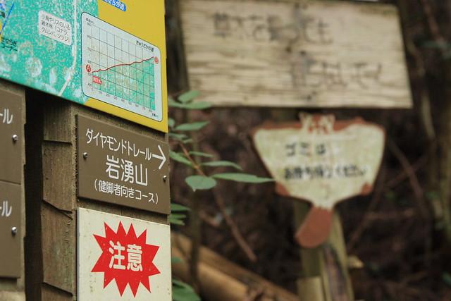 20130910岩湧山0027