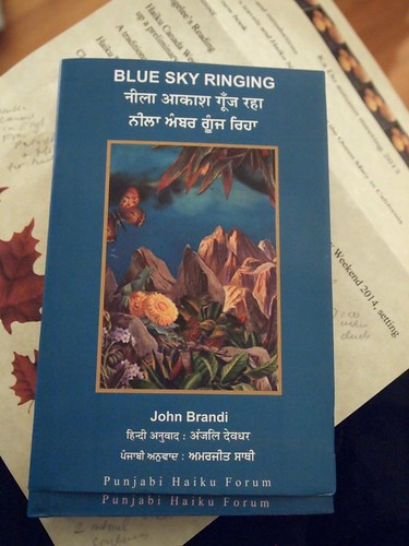 John Brandi in Hindi and Punjabi